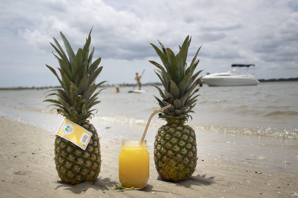 perfect pineapple beach